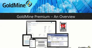 GoldMine Overview