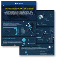 W-Systems CRM Survey Infographic Preview